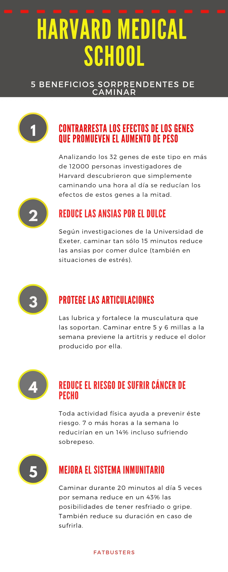 Infografía Harvard Medical School Fatbusters