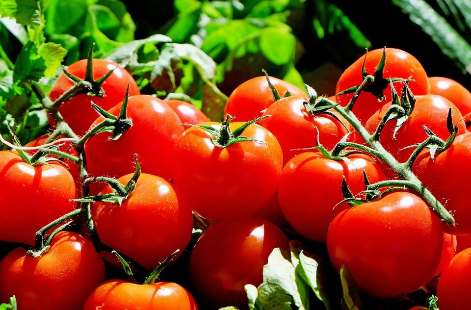 entrenador personal tomate mallorca